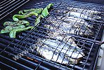 01-sardines-peppers-on-grill-2-.jpg